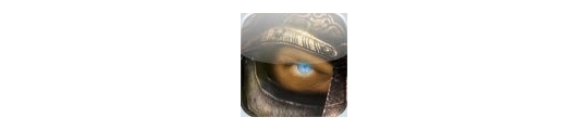 iPhone gratis game: Kingdoms Live
