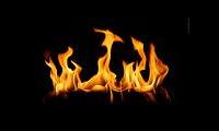Barbecue op je iPhone met de applicatie barbecue