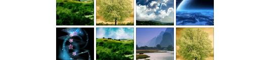 Wallpaper Nature: gratis app met 300 mooie wallpapers