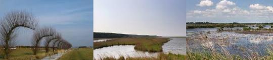 In Nederland door natuurgebieden wandelen met iPhone app