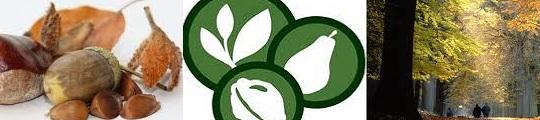 Ga noten plukken met de Wildplukwijzer app op je iPhone