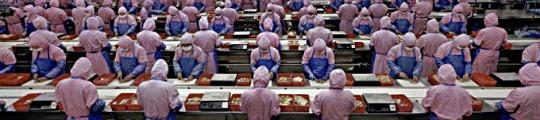 Foxconn verhoogt productiecapaciteit voor release iPhone 5S