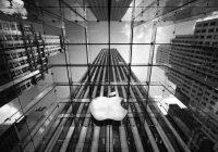 Apple aandeel bereikt hoogste punt van dit jaar