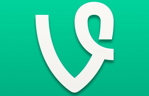 Vine update voegt Nederlandse taal toe aan iOS-app