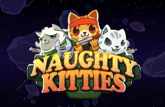 Voer strategisch oorlogje met katten in Naughty Kitties