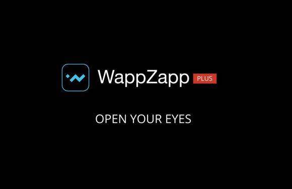 Nederlandse videodienst Wappzapp stopt per volgend jaar