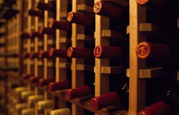 De 5 beste wijn apps voor fijnproevers