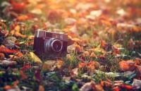 8 handige tips voor Instagram op de iPhone