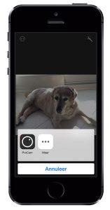 foto-app extensies