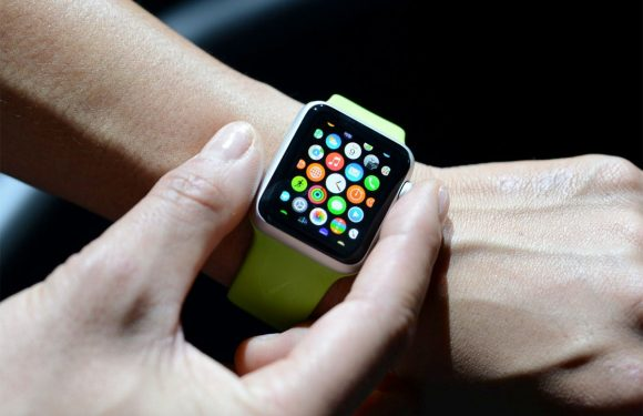 Zo ziet de Apple Watch companion-app eruit