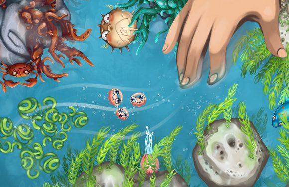 Jelly Reef: breng kwallen naar veiligheid in een gevaarlijke oceaan