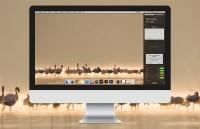 Tip: voeg sociale media toe aan het Berichtencentrum op de Mac