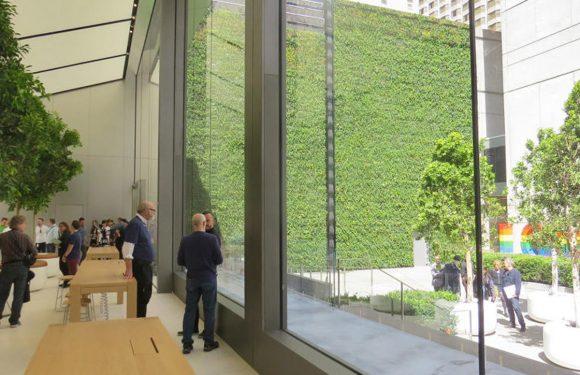 Met deze 5 vernieuwingen wil Apple zijn winkels vernieuwen