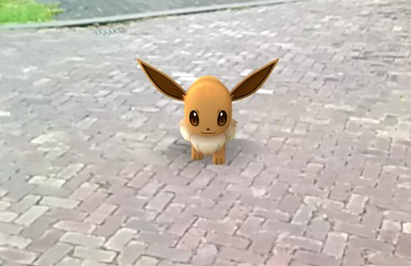 Den Haag spant rechtszaak aan tegen maker Pokémon Go