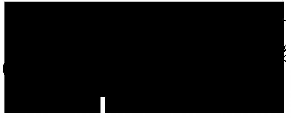 shadowbug_logo