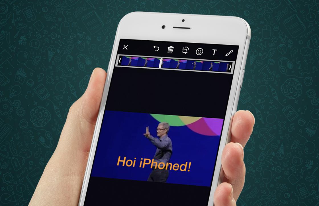 Eindelijk! WhatsApp laat je gifs zoeken en versturen vanuit de app