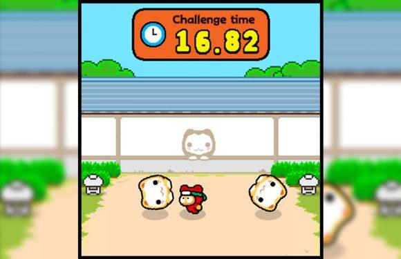 Flappy Bird-maker brengt nieuw spel uit met lastige uitdagingen