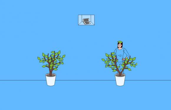 Zoek de verstopte spelcomputer in deze maffe iPhone-game