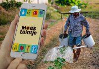 Met de handige AH Moestuintje-app voorkom je dat je pa-radijs wortel schiet