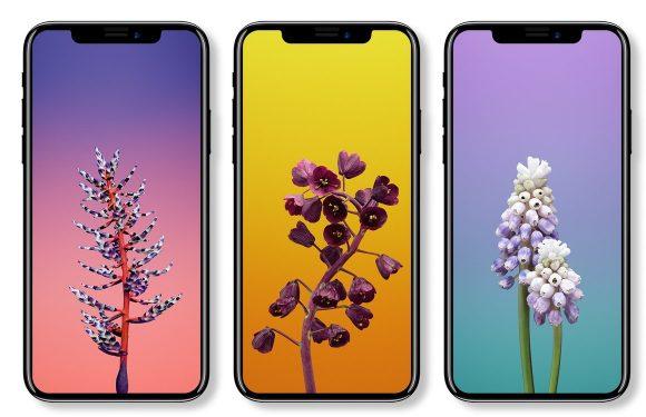 De laatste iPhone X en iPhone 8 (Plus) geruchten verzameld