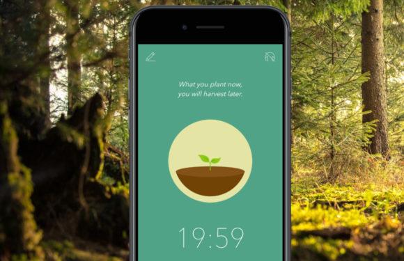 Focus-app-ipad-iphone-forest