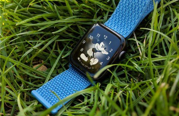 De wearables-markt blijft groeien, met Apple als absolute marktleider