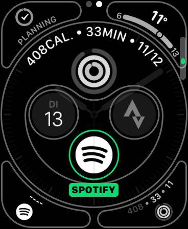 Spotify AppLE Watch App (5)