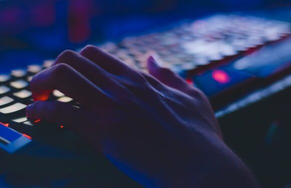 Schermen met Termen #8: alles over malware