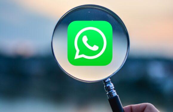 'WhatsApp krijgt verbeterde zoekfunctie voor foto's, video's en meer'