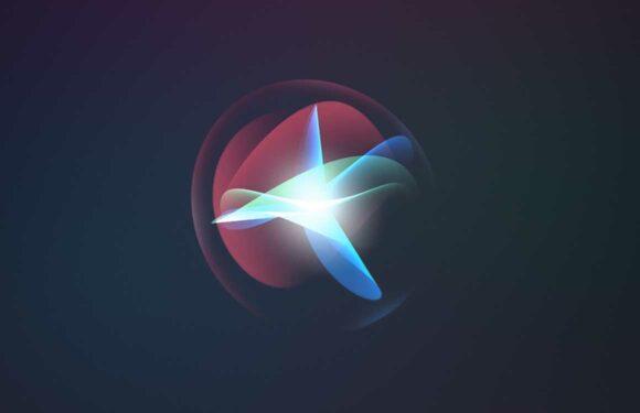 Schermen met termen #2 Siri-editie