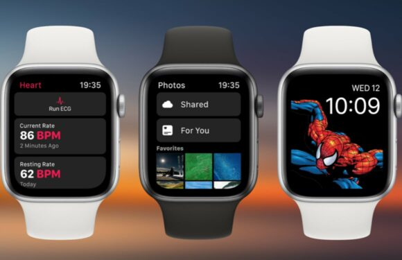 Concept: Zo kan watchOS 6 de Activiteit-app, wijzerplaten en meer verbeteren