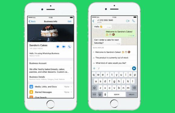 Wat de uitrol van WhatsApp Business voor iOS voor jou betekent – update