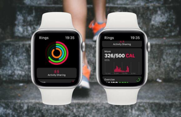 5 manieren waarop watchOS 6 je nog meer kan laten bewegen