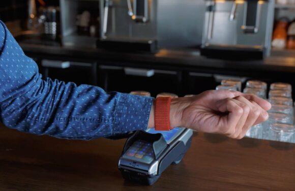 Zo blokkeer je Apple Pay wanneer je Apple-apparaat gestolen is