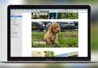 Dit is de nieuwe Foto's-app van macOS Catalina: 5 verbeteringen
