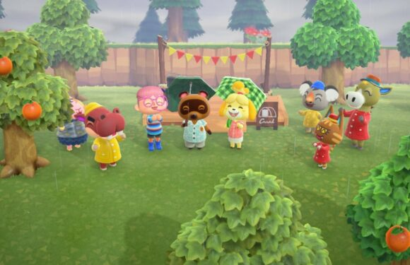 animal crossing new horizons apps