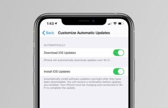 iOS 13.6 update-functie