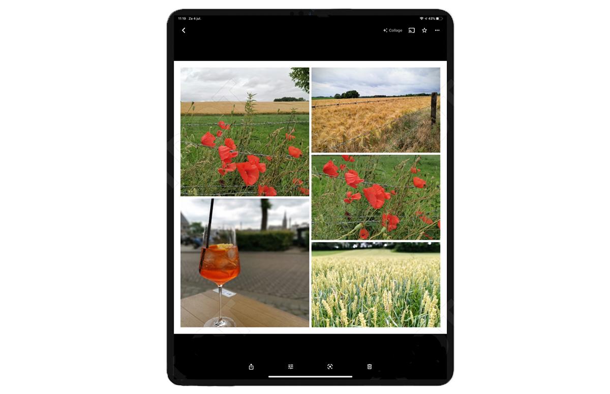 Tip: Maak een collage van je vakantiekiekjes met Google Foto's op je iPhone of iPad