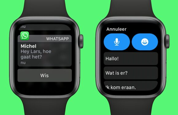 WhatsApp Apple Watch