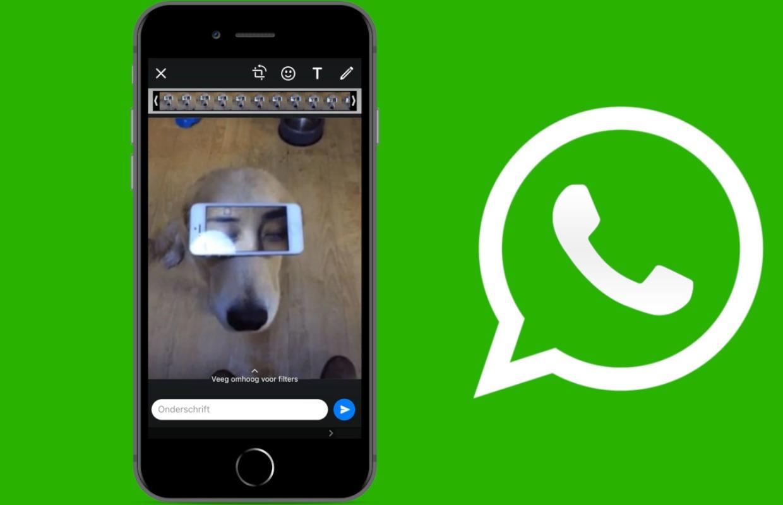 Een gif maken via WhatsApp: zo doe je dat