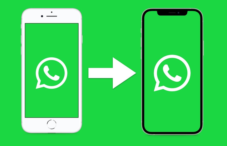 WhatsApp overzetten naar een nieuwe iPhone: zo doe je dat in 4 stappen